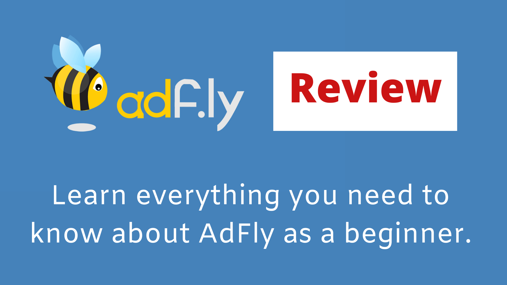 AdFly Review: Here's What They Don't Tell You
